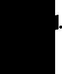 logo-dash-negru